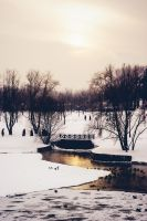 Just in winter by potf
