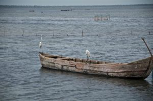 Fishing 4. Jaffna. Sri Lanka by jennystokes