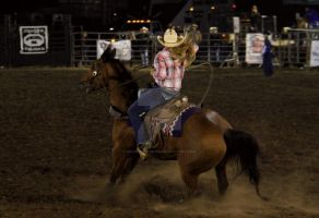 Rodeo by MorningGlory34