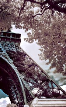 Eiffel Tower 1 by Amedeah