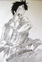 Luffy by drawing520