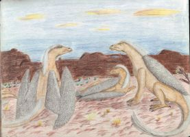 Feathered Dragons by CherokeeGal1975