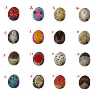 Gryphon Mystery Eggs! by Kingfisher-Gryphon