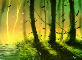 The perfect forest by ryky