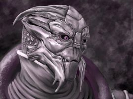 PSW 2 - Turian Portrait Study by MoonEcho