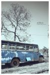 oldbus by qqphotography