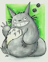 My friend Totoro by Merinid-DE