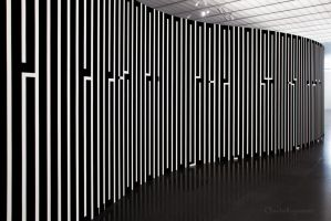 Zebra Curves by Cloudwhisperer67