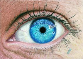 Realistic Eye by Bajanoski