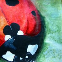 Ladybird-exam by OlgaC