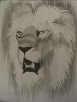 Lion- Parallel Line Drawing by rainbowdolphin14
