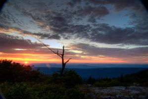 Dolly Sods Sunrise Series VI by dissenters101