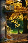 Autumn ..67.. by my-shots