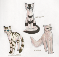 My Old Warrior Cat OCs by Feline-Basilisk