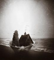 Shell by crilleb50