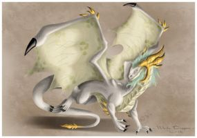 White Dragon by K-vin
