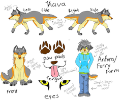 Kava reference sheet by KavaTheWolfie9149