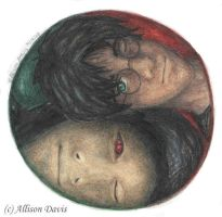 Harry and Voldemort Ying Yang by miss-a-r-t