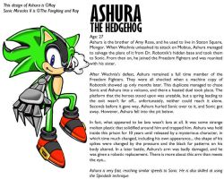 Ashura the Hedgehog -SA style by FangkingOmega