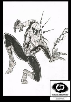 Spiderman Sketch by Docolomansky