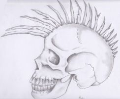 .Mohawk Skull by anarchlien