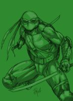 leonardo sketch :) by dg-doodles