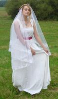 bride on a field 14 by indeed-stock