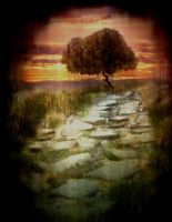 The Path by annakybele