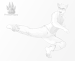 Pose Practice - Flying Side kick by FrostyPuppy