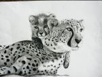 Mother Cheetah and Cub by Cherrycola8795