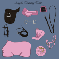 Angel's Training Tack by Zephyrra