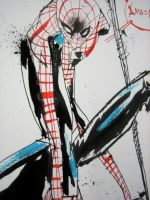 Spidey Too by JimMahfood-FoodOne