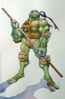 TMNT donatello by rogercruz