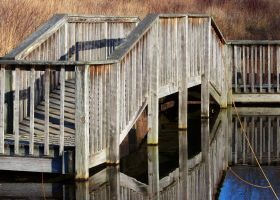 Gorman Boardwalk III by MadGardens