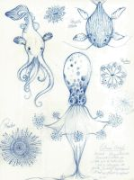 sea creatures concept research by luzsky22