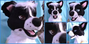 Border Collie Fursuit Head by TomorrowsBadSeeds