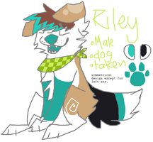 temporary riley ref by winchesterss