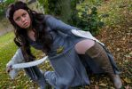 Cosplay: Arwen (Lord of the Rings) by T-e-r-e-n