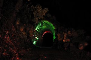 Scary old tunnel in the woods by murkin