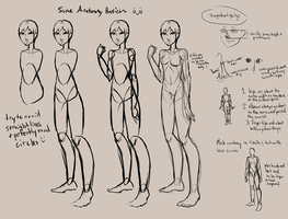 Anatomies by Pikotree