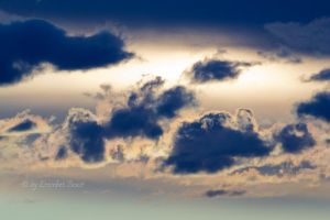 Sky creatures by erzsebet-beast
