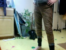 Jack Frost Pants: Complete by RoxyRoo