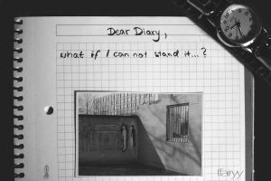 Dear diary by FFairyy