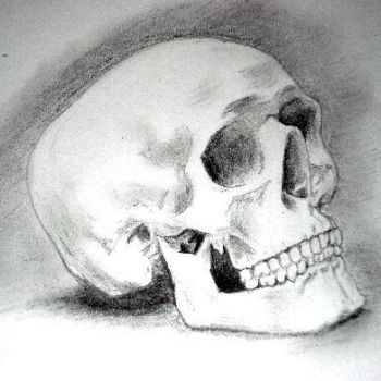 skull by esparrow