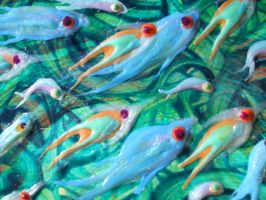 Fish - Detail 6 by Hoon-King