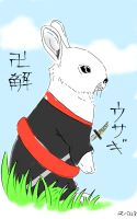 Bankai Rabbit by All4Sparta