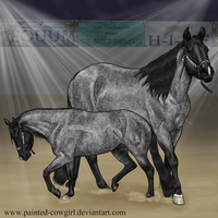 Spanky-BreedShowcaseConfo by painted-cowgirl