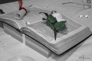 Bible and flower by elliemoo