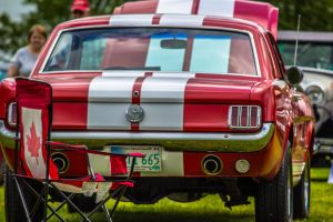 34th Annual Street Rod Association Show n' Shine by aydonis