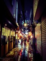 Izakaya street in Shinjuku by Princess-Suki-W